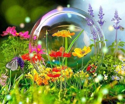 Superbe journ e de printemps for Images du printemps gratuites