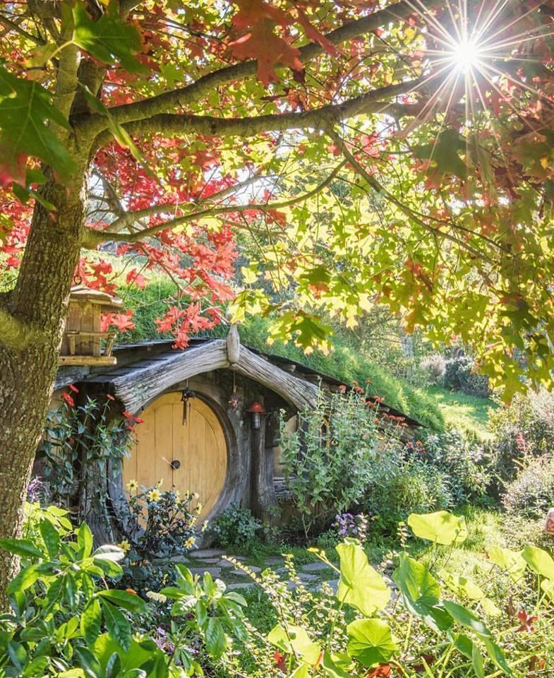 La cabane au fond du jardin for Au fond du jardin